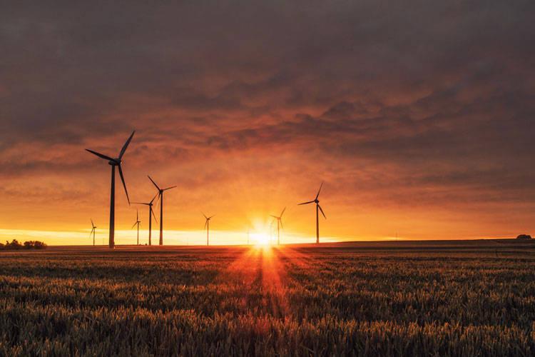 Le aziende più sostenibili del mondo